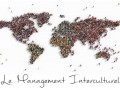 management-interculturel_fra